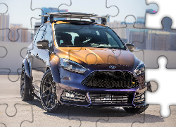 Ford Focus ST Mk3, Blood Type Racing, 2017