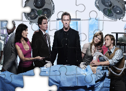 Dr House, Aktorzy, Serial, Hugh Laurie