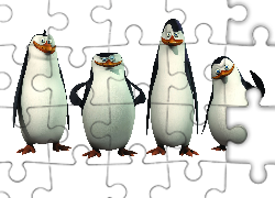 Ptaki, Pingwiny z Madagaskaru, The Penguins of Madagascar