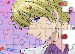 Ouran High School Host Club, facet