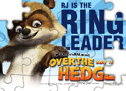 Szop RJ, Skok przez płot, Over the Hedge