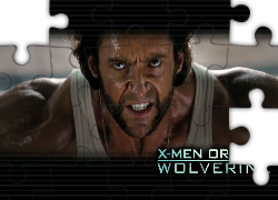 X_Men Wolverine Origins