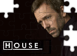 Dr. House,  Hugh Laurie