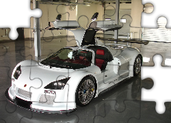 Gumpert Apollo, Garaż