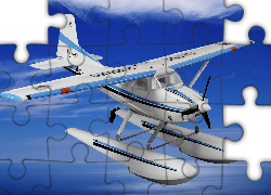 Cessna 185, Skywagon, Grafika