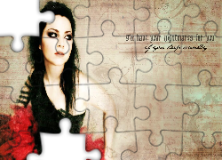 Amy Lee, Evanescence, Plakat