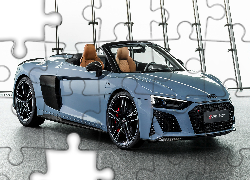 Audi R8 Spyder Performance