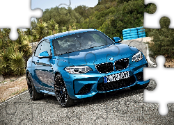 BMW M2 F87, Coupe, 2016