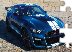 Ford Mustang Shelby GT500, 2019