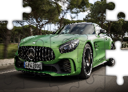 Mercedes-AMG GT R, Coupe